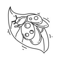 Gartenarbeit Marienkäfer-Symbol. handgezeichnetes Symbol, Umriss schwarz, vektor