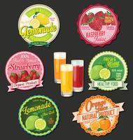 Sammlung Retro- Designaufkleber der organischen Frucht