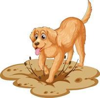 Golden Retriever Hund Cartoon auf weißem Hintergrund vektor