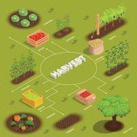Flussdiagramm zur Ernte in der Landwirtschaft vektor