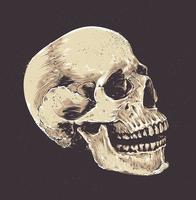 Anatomischer Grunge-Schädel