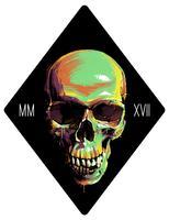 Måla Graffiti Skull