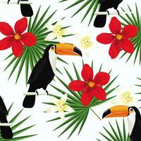 Tropisk bakgrund med toucans och tropiska löv