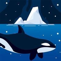 Orca Wal Nordpoltier und Eisberg Nachthimmel vektor