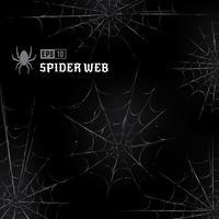 Vektorspinnweben auf schwarzem Hintergrund