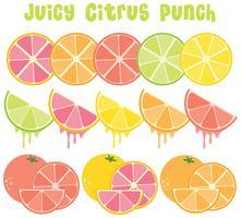 Citrusfruktsamling
