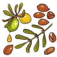 Set av arganolja