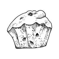 Kuchen mit Rosinen und Aquarellskizze