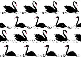 Par svart svan. Sömlöst mönster.