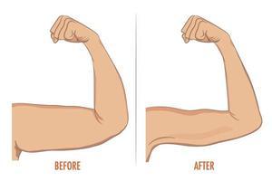 weiblicher Bizeps vor und nach dem Sport. Arme zeigen Fortschritt nach vektor