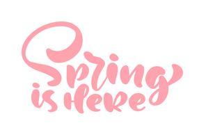 Rosa Kalligraphiebeschriftungsphrase Frühling ist hier. Vektor Hand gezeichneter lokalisierter Text