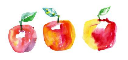 akvarelldragande äpplen