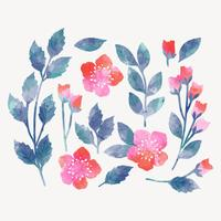Vektor-Aquarell-Blumenelemente
