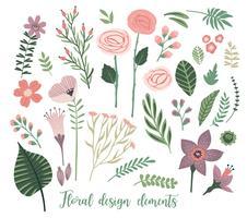Vektor blommiga designelement. Löv, blommor, gräs, grenar, bär.