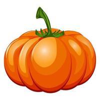 frischer orangefarbener Kürbis isoliert auf weißem Hintergrund vektor