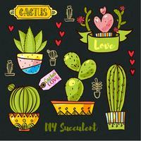 Kaktusar och succulenter i krukor.