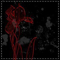 Iris für Grußkarte. vektor