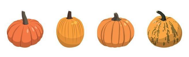 Satz realistische große orangefarbene Kürbisse auf weißem Hintergrund - Vektor