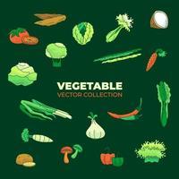 Vektorsammlung von sortiertem frischem und grünem Gemüse vektor