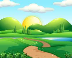 Natur scen med väg och fält