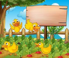 Gartenszene mit vier Enten und Zeichen vektor