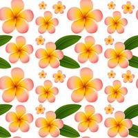 Sömlös bakgrund med rosa plumeria blommor vektor