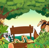 Zeichenschablone mit vielen Tieren im Dschungel vektor
