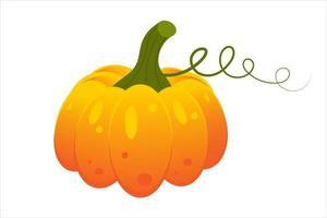 Kürbis. Herbst-Halloween- oder Thanksgiving-Kürbissymbol. vektor