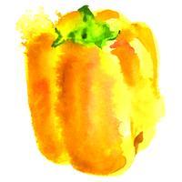 gelbes Gemüsepaprika-Aquarell vektor