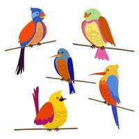 Abborre fågel klipp set vektor
