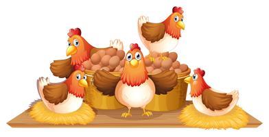 Hühner und Eier im Korb vektor