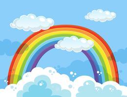 Ein schöner Regenbogen über dem Himmel vektor
