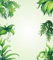 verschiedene Blätter vektor