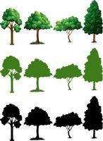 Set av träddesign