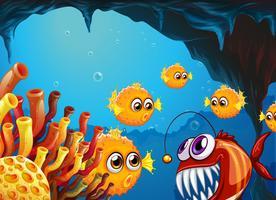 En grupp pufferfiskar och en läskig piranha inuti grottan
