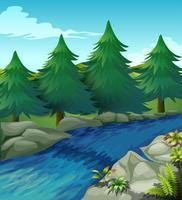 Fluss vektor