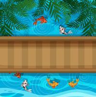 Koi Fische im Teich mit Brücke