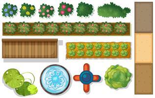 Övre vyn av växter och damm i trädgården