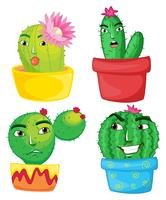 Fyra kaktusplantor i krukorna