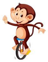 Ein Affe reitet Einrad vektor