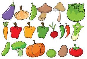 Gemüse vektor