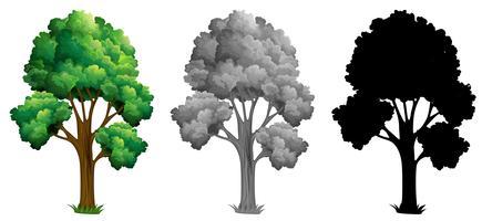 Satz des lokalisierten Baums