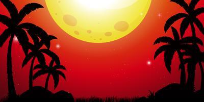 Schattenbildszene mit Kokosnussbäumen