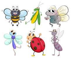 Verschiedene Insekten vektor