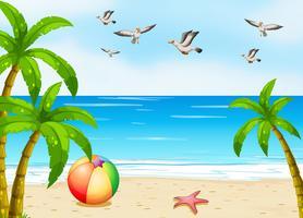 En strand med fåglar vektor
