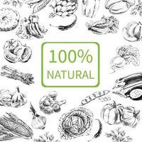 handgezeichnete Vektorillustration mit Gemüse. eine Skizze im Vintage-Stil. Designvorlage. vektor