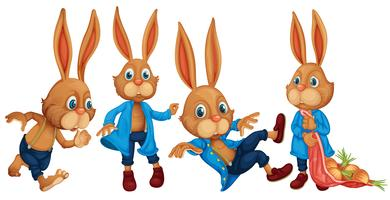 Kaninchen vektor