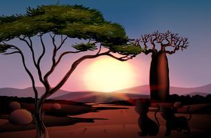 Ein Sonnenuntergang in der Wüste mit Tieren vektor