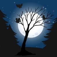 Schattenbild-dunkle Nacht und Vögel
