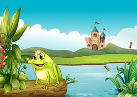 Ein Frosch mit Krone